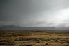 BARDENAS 4999 (charles.lequerrec) Tags: nikonfr 50mm lonely desert bardenas farmhouse stormysky arid peacefull landscape nowhereplace cloudy storm alone lostplace deserted farm twilight d810 sunrise field