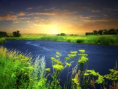 James River 16 (mrbillt6) Tags: landscape rural prairie jamesriver river shore grass skyoutdoors country countryside northdakota