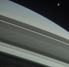 Saturn and Mimas (Lights In The Dark) Tags: saturn rings mimas moon space