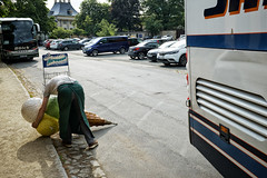 Roadkill (Monty May (OBSERVE)) Tags: pillnitz germany street streetphotography humour
