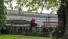 Alone by Putney Bridge (PhredKH) Tags: canonphotography fredkh photosbyphredkh phredkh splendid fredknoxhooke putney putneybridge bridge london londonpeople people peoplewatching 2470mm ef2470mmf4lisusm canoneos5dmarkiii trees grass wall bench girl woman red redhair candid