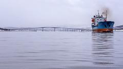 Sandnessund bridge and cargo ship Wilson Reef (Snemann) Tags: pentax k5 atsea ship bridge tromsø troms norway vessels