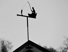 6Q3A6236 (www.ilkkajukarainen.fi) Tags: vaasa saaristo raippaluoto björkö björköpaninen vesi water sea meri merenkurkku archipelago spring happy life visit travel traveling suomi suomi100 finlland finlande eu europa scaninavia
