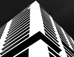 Straight Up (YIP2) Tags: bw angles window windows abstract minimal minimalism simple less line linea detail facade pattern diagonal geometry geometric design architecture building repetition white contrast construction