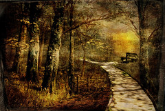 A pathway to Paul and Marc (BirgittaSjostedt- away for a while.) Tags: landscape forest wood magical old tree pathway bench light texture paint birgittasjostedt creation