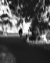 Crossroads (angrykarl) Tags: canon canoneos canoneosm5 canonm5 canonefm1855 icm intentionalcameramovement bnw blackandwhite blackwhite blacknwhite street streetphotography streetphoto
