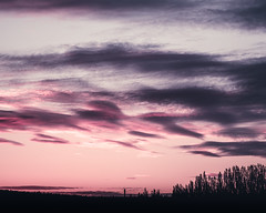 Lovely clouds (JH') Tags: warm evening trees outdoor outdoors photoshoot photography sky summer sweden sigma sunset d750 heaven landscape clouds colors beautiful nikon nature naturephotograph wonderful explore