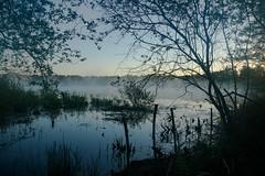6:00 Uhr MEZ > Early morning in the moor   < >   Früh Morgens im Moor (K-PIXEL-N) Tags: ngc natur wasser moor morgen sonnenaufgang teich see outdoor gifhorn viehmoor sonne gras baum himmel landschaft boot fluss foto feld nebel landstrase