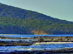 Depot Beach VI (elphweb) Tags: hdr highdynamicrange nsw australia tree trees forest bush wood woods waves surf