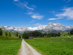 Der Weg... (-BigM-) Tags: schweiz switzerland alt sankt johann toggenburg gallen berg mountain säntis alpen landschaft bergwelt landscape kanton