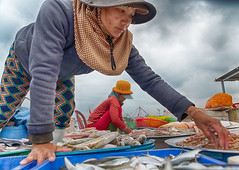 Hoi An - Ladies at the Fish Market (Gilama Mill) Tags: prawns selling ladies fishmarket hoian market fish asia landscapes people travel vietnam water
