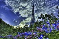 Shrubbery of Ni (Stuck in Customs) Tags: flowers paris france tower eiffeltower eiffel ni hdr shrubbery