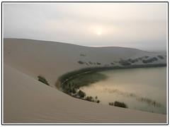 (aZ-Saudi) Tags: nature landscape arabic saudi arabia ksa  alhasa         arabin  arabs
