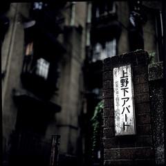 Remain in Lights : One (TommyOshima) Tags: japan tokyo fuji ueno rvp xenotar exakta66 dojunkaiapartment