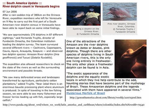 Dolphin.html