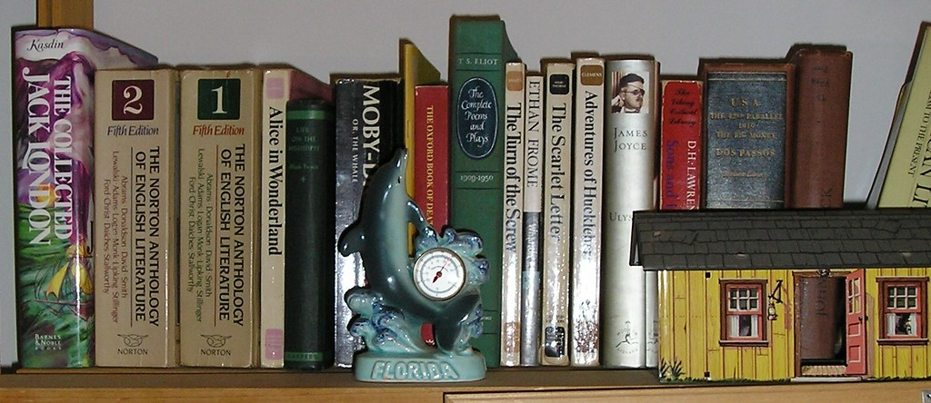 Books and Tacky Ceramic Dolphin