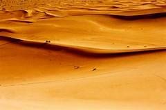 Camel atrophy (nicointhebus (nicolas monnot)) Tags: 2005 china travel travelling nature landscape sand bravo scenery asia desert dune camel silkroad gansu dunhuang nicointhebus specland fivestarsgallery artlibre