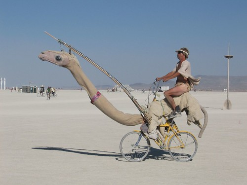La bicicleta camello