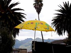 le soleil (tartarugae) Tags: umbrella oscar ecuador nuvole disegni mercato palme vento gioco otavalo