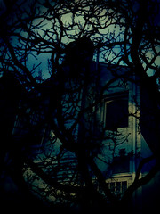 peeping through. (find_shirlz) Tags: old blue trees house silhouette mysterious hauntedseries
