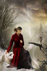 Emina (Gale Franey) Tags: woman snow birds forest photoshop graphicdesign eagle digitalart computerart computergraphics reiner emina galefraney abigfave bratanesque galefra