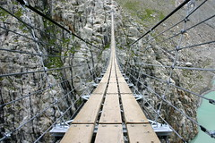Hanging Bridge at Trift Glacier ('Apu') Tags: bridge alps switzerland glacier hangingbridge trift judgmentday54
