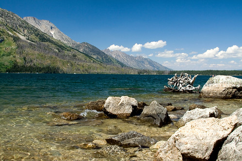 On the Shore of Jenny Lake
