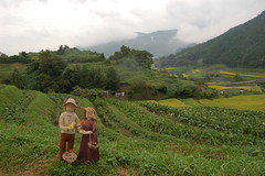 20061006asuka0382 (cbuddha) Tags: japan rice buddha buddhist ikebana sakae ricefields asuka oka ocha
