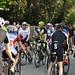 """Spreewaldmarathon 2018 • <a style=""""font-size:0.8em;"""" href=""""http://www.flickr.com/photos/44975520@N03/26851065077/"""" target=""""_blank"""">View on Flickr</a>"""