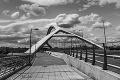 ZGZ201606_194R-BYN_FLK (Valentin Andres) Tags: bw blackwhite blancoynegro byn españa expo2008 milenio milleniums spain white zaragoza black blackandwhite bridge puente tercer third