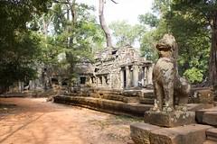 Angkor-24 (Steph.Blandino) Tags: cambodia cambodge tdm travel tourdumonde worldtour voyage siemreap angkor temple followme passport