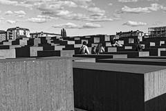 Holocaust Memorial (Pascal Volk) Tags: berlin mitte berlinmitte denkmalfürdieermordetenjudeneuropas memorialtothemurderedjewsofeurope holocaustmahnmal holocaustmemorial monumentoalosjudíosdeeuropaasesinados monumentodelholocausto artinbw schwarz weis black white blackandwhite schwarzweis sw bw bnw blancoynegro blanconegro wideangle weitwinkel granangular superwideangle superweitwinkel ultrawideangle ultraweitwinkel ww wa sww swa uww uwa canoneos80d sigma24mmf14dghsm|art 24mmf14 24mmlens unpointquatre onepointfour dxofilmpack 24mm