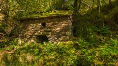 old watermill Busmente/Murias 1.)-2425 (dironzafrancesco) Tags: tamron lightroomcc sony tamronsp2470mmf28diusd slta99v watermill wassermühle natur villayón principadodeasturias spanien es