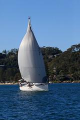 _MG_0295 (flagstaffmarine) Tags: sydney nsw aus beneteau pittwater regatta 2018 flagstaff marine