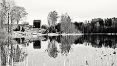 Reflections (Stefano Rugolo) Tags: stefanorugolo pentax k5 pentaxk5 helios44258mmf2 ricohimaging monochrome contrast landscape countryside lake trees reflection barn water reed birch
