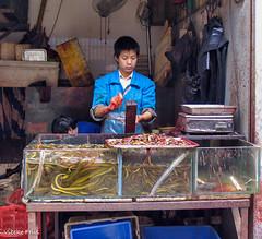 070423 151903 (friiskiwi) Tags: dvd0704c china market shopkeeper snakes xian xianshi shaanxisheng cn