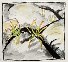 Plantes grasses dans les rochers.Version aquarelle. (cecile_halbert) Tags: dessin crobard croquis esquisse aquarelle watercolor sketch sketcher sketching sketchbookpage plantesgrasses plant succulentes succulent botanique botanical nature painting