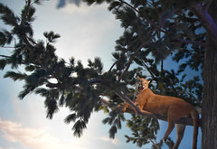 Mountain Lion (Adventurer Dustin Holmes) Tags: 2018 wondersofwildlife museum mountainlion animal animals cougar bigcat bigcats animalia chordata taxidermy stuffed missouri springfieldmo springfieldmissouri tree