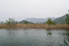 On Skadar Lake (Nelleke C) Tags: 2018 balkan montenegro nationaalparkskadarskojezero skadarlake virpazar holiday lake landscape landschap meer vakantie