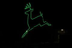 Green Deer (Bracus Triticum) Tags: green deer brandon ブランドン manitoba マニトバ州 canada カナダ 12月 december winter 2017 平成29年 じゅうにがつ 十二月 jūnigatsu 師走 shiwasu priestsrun