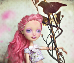 This Creature Representing More to You (GothGeekBasterd) Tags: mattel everafterhigh rebel rebellious romantic rose cacupid cupid chariclo arganthone cake candy sweet ooak handmade doll basic amore love