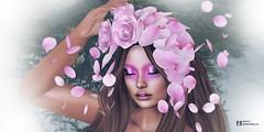 """""""La belleza comienza en el instante en que decides ser tú misma"""". (pattybartavelle) Tags:"""