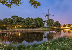 Waiting for the light! (karindebruin) Tags: middelburg nederland thenetherlands zeeland molen dehoop sunset zonsondergang reflection reflectie mill fluitekruid cowparsley