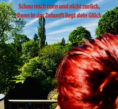 Guten Morgen ihr Lieben ☀️ happy Day everyone 😊 #gutenmorgen #gutentag #goodmorning #happyday #schautnachvorn #futureinsteadofpasttense #kontraste #sunshine #sonnnenschein #spaßamleben #naturallights #redandgreen #redhairs #nature #natur #red # (revolverheld000) Tags: gutenmorgen gutentag goodmorning happyday schautnachvorn futureinsteadofpasttense kontraste sunshine sonnnenschein spasamleben naturallights redandgreen redhairs nature natur red green