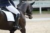 _MG_7620 (dreiwn) Tags: dressage dressur dressuur pferd reitturnier turnierreiten pferdesport horse horseback horseriding equestrian reitverein dressurprüfung kandare doublebridle reiten pferde reitplatz ridingarena