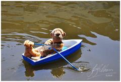 Messin' About on the River (Aged Desperado) Tags: 365 nikon nikkor nikonflickraward d5000 18105mm 18105 landscape canal boat toys