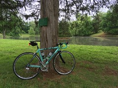 1885 and pond. (Bob Mical) Tags: bianchi 1885 bicycle ride charlottesville virginia celeste