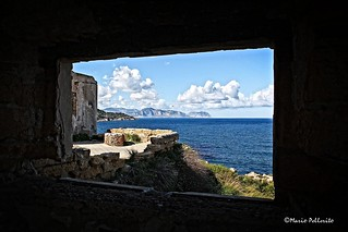 Window on the Sea... II