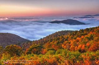 Sunrise & Fall Fog Ocean in Shenandoah National Park