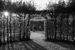 Go for a walk (gambajo) Tags: 1year1town1lens brühl project blackandwhite blackwhite black white people street streetphotography public outdoors park schlosspark augustusburg x100s fujix100s fujifilmx100s sun sunlight walk hedge hedgerow shadows personen menschen